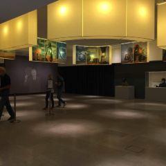 熱內·馬格利特博物館用戶圖片