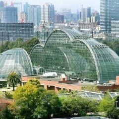 夢の島熱帯植物館のユーザー投稿写真