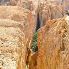 Chebika Oasis User Photo