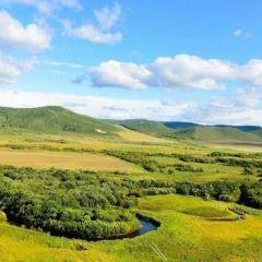 大興安嶺汗馬自然保護區用戶圖片