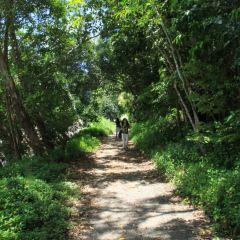 Botani Eco Park用戶圖片