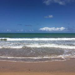 卡萊塔斯海灘用戶圖片
