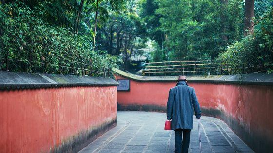 Chengdu Day Tour of Wuhou Temple, Jinli Street and Qingyang Palace