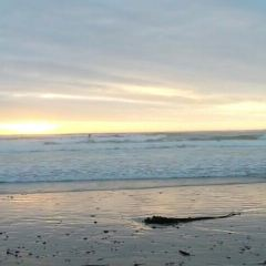 默克白色海灘用戶圖片
