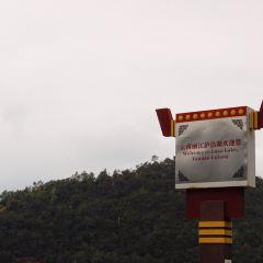 양얼처나무 국제예술박물관 여행 사진