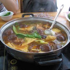 苗伯媽酸湯火鍋店用戶圖片