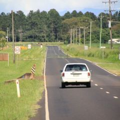 Captain Cook Hwy User Photo