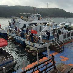 陽西青洲島用戶圖片