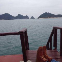 Dolphin Restaurant User Photo
