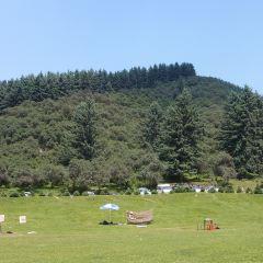Yaozigou National Forest Park User Photo