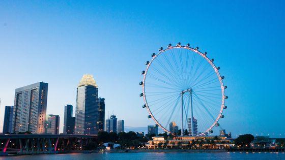 싱가포르 플라이어 탑승권 (타임 캡슐 옵션 선택 가능)
