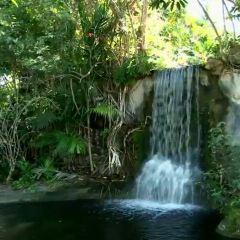 Garden of the Groves User Photo