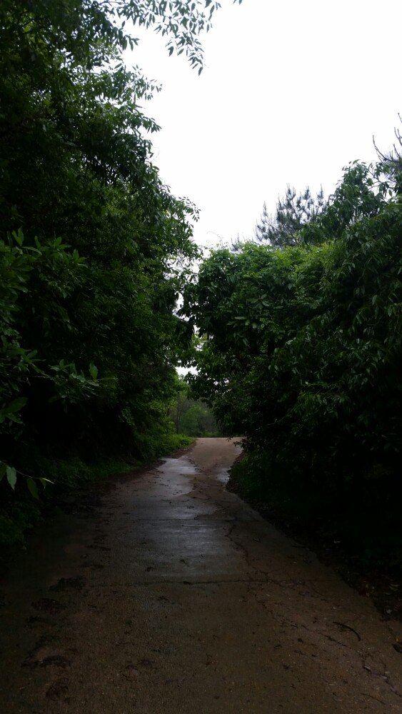 치루산 관광단지