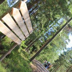 Nuuksio Park User Photo