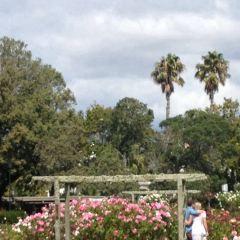 Parnell Rose Gardens User Photo