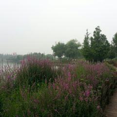 Xibei Huancheng Shuixi Park User Photo