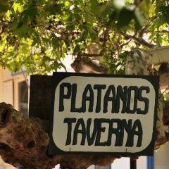 Taverna Platanos用戶圖片