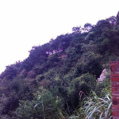 Xingning Huangfengwo Chashan Mountain Travel Zone User Photo