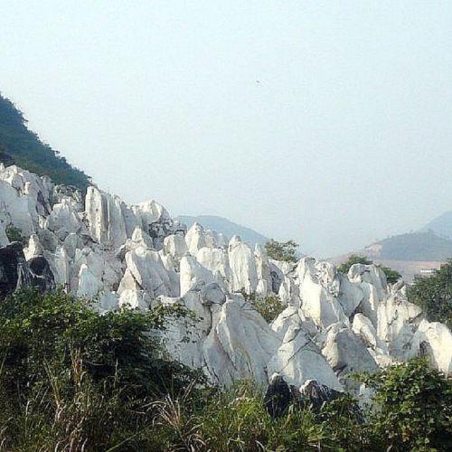 Jade Forest Scenic Area