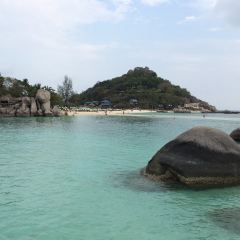 南園島張用戶圖片