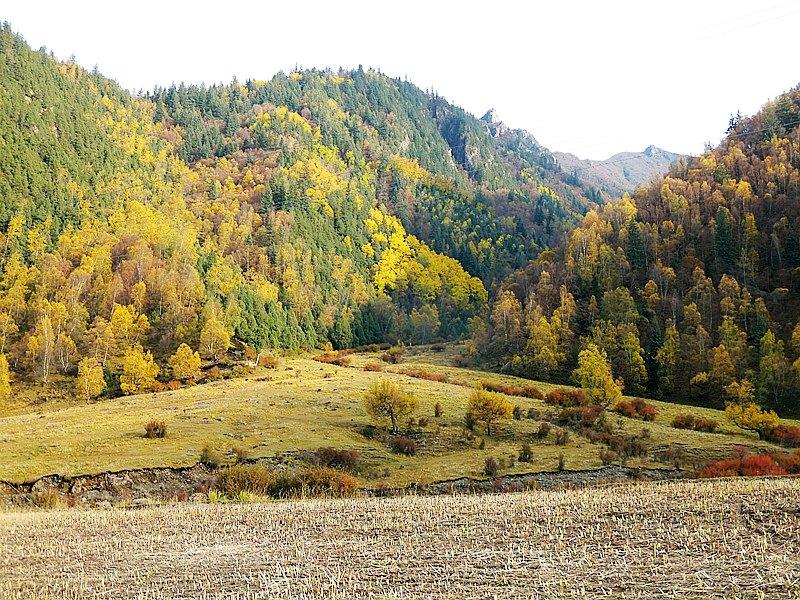 Beishan National Forest Park
