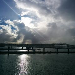 Waitemata Harbour User Photo