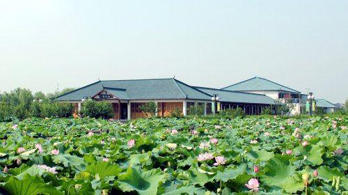 琵琶灣生態園