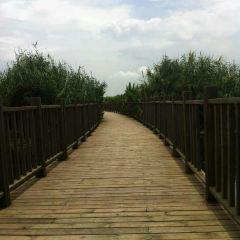 우자탕 습지공원 여행 사진