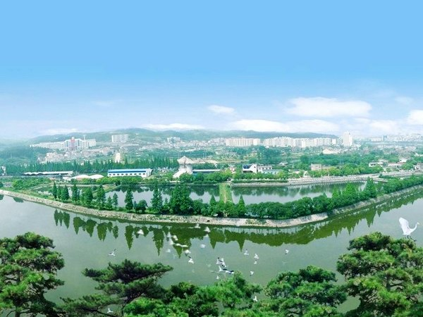 Chinese Sturgeon Garden