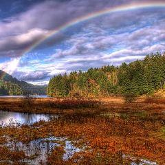 Goldstream Provincial Park User Photo