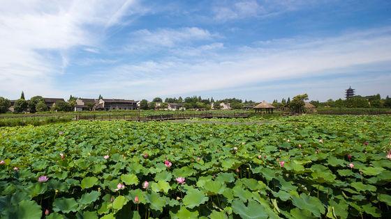 Wuzhen West Gate One Day Tour