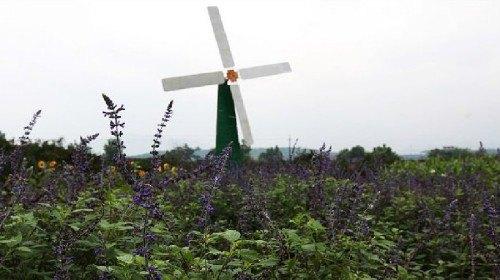 Xianle Rural Tourist Area