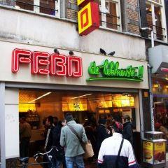Febo User Photo