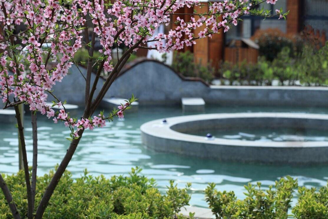 Easpring Hot Springs Resort Ticket