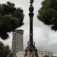 松樹廣場用戶圖片