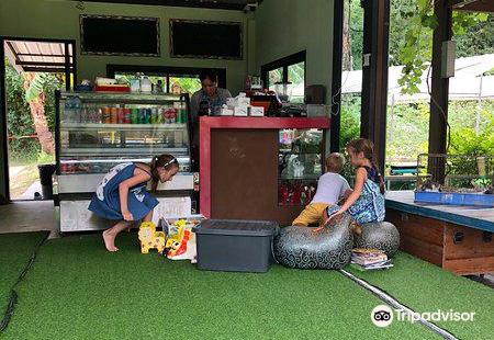 Samui Sheep Farm & Salad Bar
