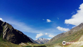 Nature in Himachal Pradesh