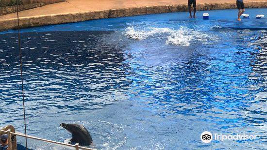 德班烏沙卡水底世界水族館