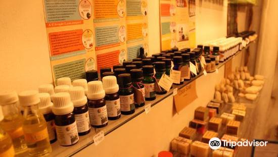 神聖植物、魔術及醫藥博物館