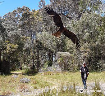 Eagles Heritage Wildlife Centre