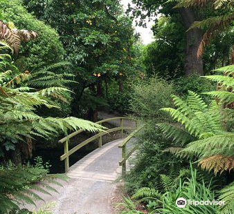 Ilam Gardens