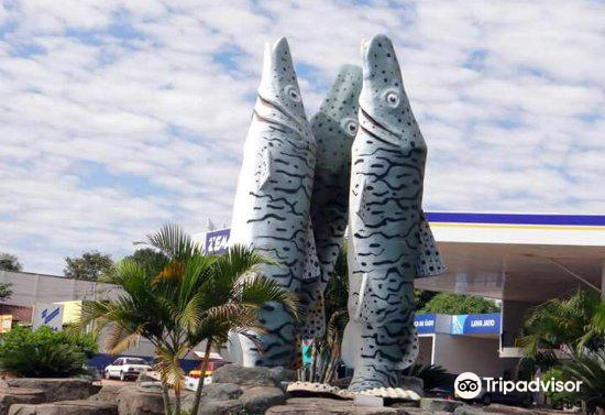 Peixe Cachara Monument