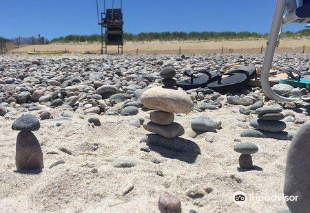 Sandy Neck海灘