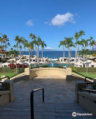 The Spa at Four Seasons Resort Maui