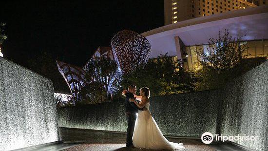 熱帶島婚禮教堂