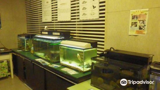 日本大學生物資源科學部博物館