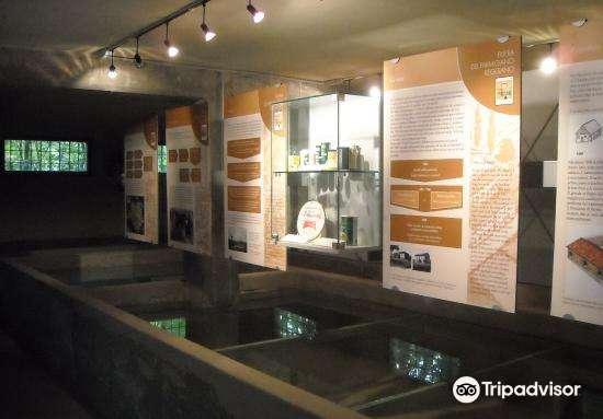 Soragna Parmigiano Reggiano Museum Ticket