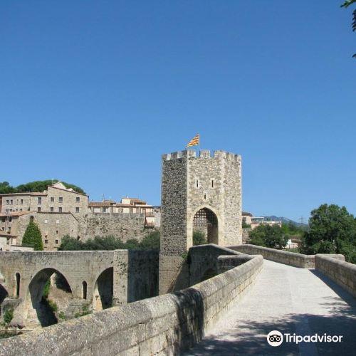 Puente viejo de Besalú (Pont vell de Besalú)