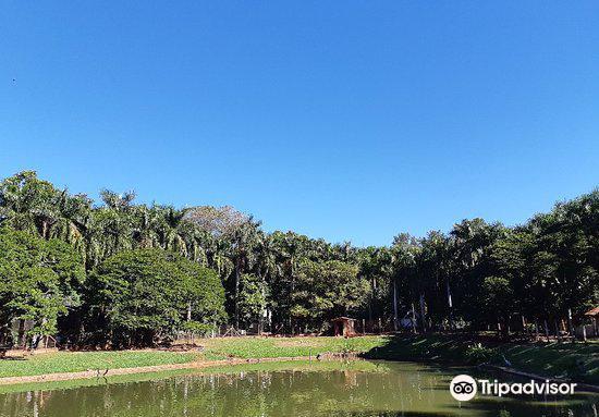Zoologico Municipal de Sao Jose do Rio Preto