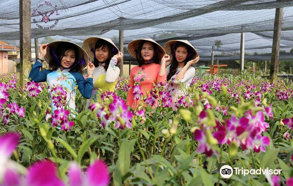 Dien Lan Thon Trang